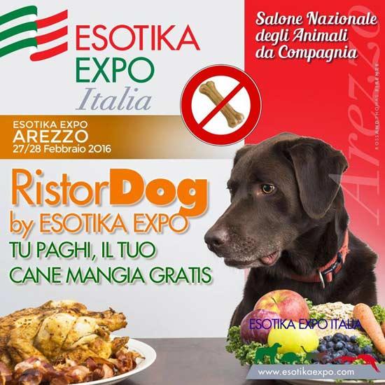 Esotika Expo Arezzo 2016