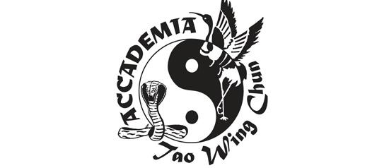 Kung Fu Wing Chun al Parco Villa Gandini Formigine