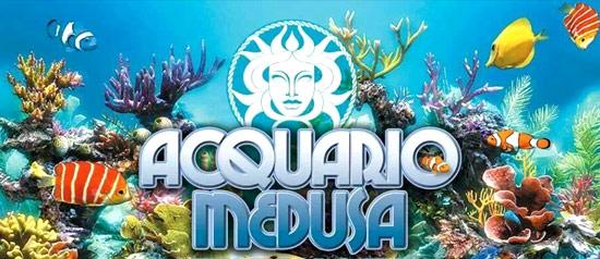 Acquario Medusa Carnevale 2014