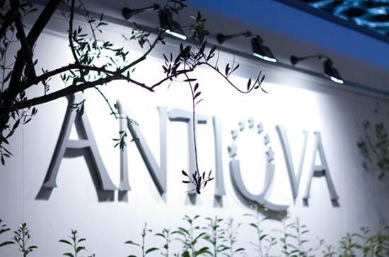 Antiqua 2014 Genova