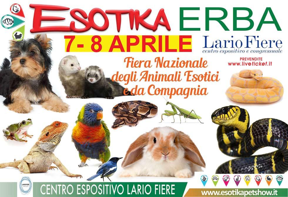 Esotika Expo Milano 2018