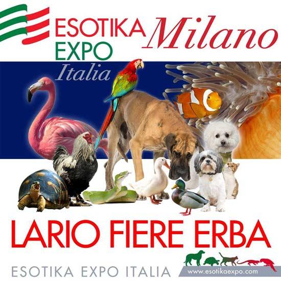Esotika Expo Milano 2016