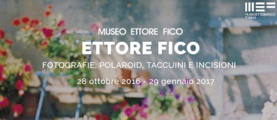 Ettore Fico al Museo Ettore Fico a Torino