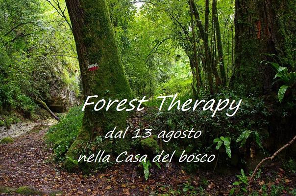 """""""Forest Therapy"""" Parco Naturale della Valle della Lupa"""