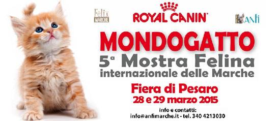 Mondogatto 5^ Mostra Felina Internazionale delle Marche a Pesaro Fiere