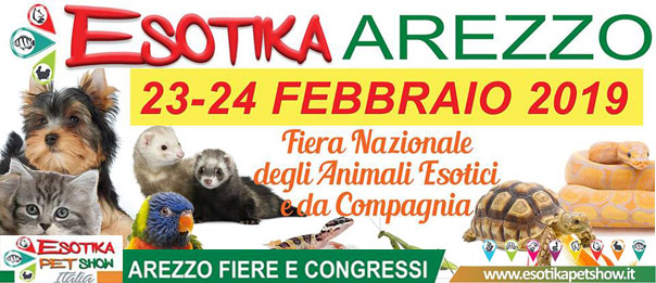 Esotika Arezzo