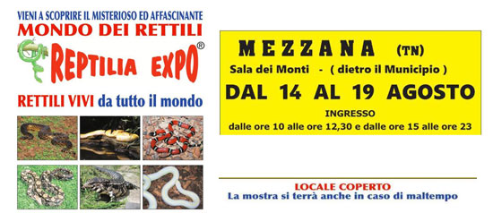 Reptilia Expo - L'affascinante mondo dei rettili a Mezzana