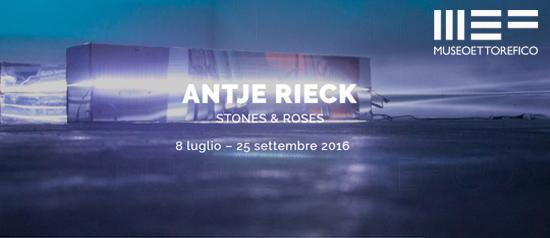 """Antje Rieck """"Stones & Roses"""" al Museo Ettore Fico a Torino"""