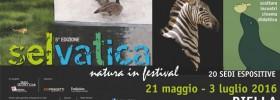"""""""Selvatica, Arte e Natura in Festival"""" a Palazzo Gromo Loso a Biella"""