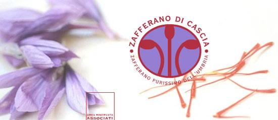 XIV Mostra mercato dello Zafferano Purissimo di Cascia